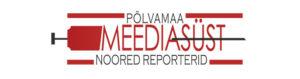 Meediasüst